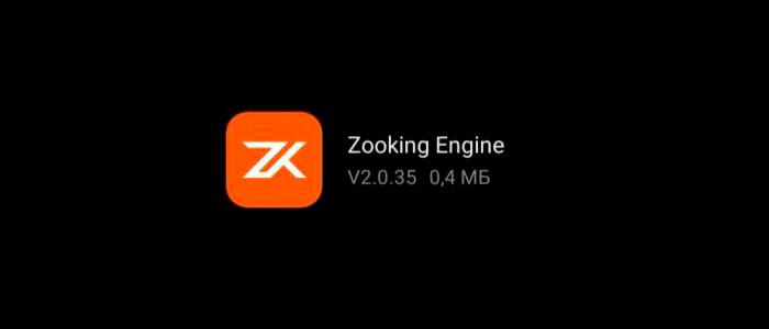 Zooking Engine - что это за программа